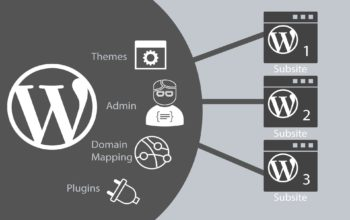 A Complete Guide To WordPress Multisite